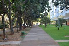Brasília na seca. De um lado o gramado cuidado pela administração e do outro cuidado pelo condomínio. Tudo isso convergindo para um ponto comum no horizonte.