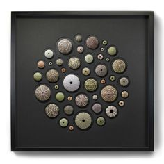"Sea Urchin shells (or ""tests"") are round and spiny, and display subtle coloring that includes shades of green, olive, brown, purple, blue, and red. Brought together in this stunning Christopher Marley mosaic, the subtle design elements draw the viewer in for closer observation of their symmetry and design."