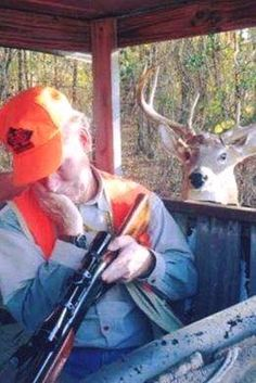 Haha out smarted by the hunting hunter sleeping – BORED Funny Hunting Pics, Deer Hunting Humor, Hunting Jokes, Funny Deer, Hunting Pictures, Deer Hunting Blinds, Funny Animal Jokes, Funny Animal Pictures, Animal Memes