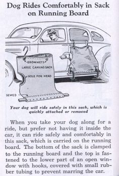 Post image for Nostalgic Daily: A Place in the Car for the Family Dog