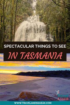 National Park Pass, National Parks, Salamanca Market, Tasmania Travel, Tasmanian Devil, White Sand Beach, Boat Building, Hiking Trails, Perfect Place