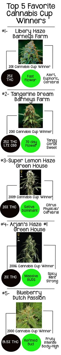 A collection of the TOP 5 Favorite Cannabis Strains available to grow in your own home. The winner of the Cannabis Cup for best overall strain is determined by a team of VIP judges. They decide which seed company has grown the very best