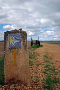 Follow the yellow arrows! - (c) Damian Corrigan