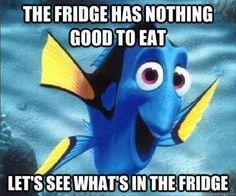 nothing to eat in fridge