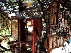 Treehouse in a National Park. A nice hut up in a tree accessed by a hanging bridge. It was built in the middle of Sierra de Huétor Natural Park and overlooks the spectacular Sierra Nevada mountains. Located in Huétor de Santillán, Andalucía, Spain. Luxury Tree Houses, Cool Tree Houses, Tiny Houses, Wood Houses, Sierra Nevada, Mini Chalet, Stay In A Treehouse, Treehouse Hotel, Great Places