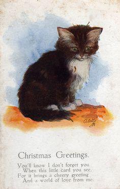 """Sweet Vintage Christmas Cat  """"Christmas Greetings"""""""