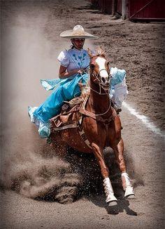 Pura Raza Espanola Yeguada Herrera Caballos Espanoles Caballos Bailadores Andalusian Lusitano Lippizzaner spanish horse Piccador Vaquero Charro