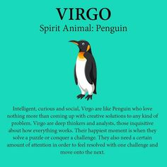 Virgo Quotes, Zodiac Signs Virgo, Virgo Horoscope, Zodiac Memes, Zodiac Star Signs, Astrology Zodiac, Zodiac Facts, Horoscopes, Virgo Love
