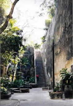 When I was young my parents took me on a cruise of the bahamas and Nassau's popular queen stairs....I remember climbing up the 102 foot staircase named after Queen Victoria..It was exciting !
