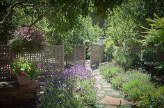 Lattice Fence, Lavender Blooms  Gates and Fencing  Ecotones Landscapes  Cambria, CA