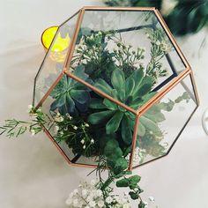 Copper Terrarium centerpiece with succulents