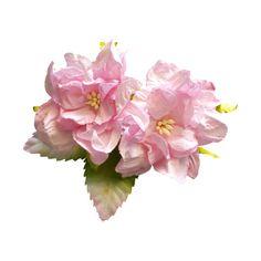 Cadi — альбом «♥♥♥♥СКРАП НАБОРЫ 4♥♥♥♥ / Iced roses» на Яндекс.Фотках ❤ liked on Polyvore featuring flowers