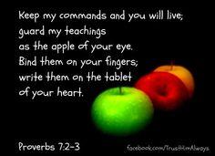 Prov. 7:2-3