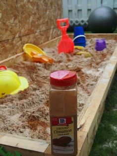 Add cinnamon  to sandboxes to keep bugs and worms out!