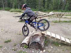 Image result for backyard mtb skills course