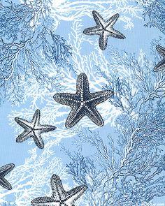 Neptune's Dream - Starfish and Coral - Powder  Blue