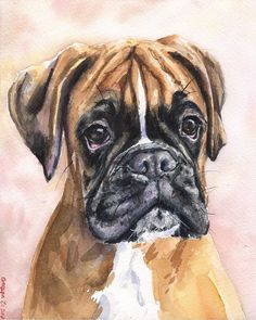 Boxer Dogs Boxer watercolor print of the Original Painting art cute Sweet Dog Decor by GeorgeWatercolorArt on Etsy - Wallpaper Pitbull, Dog Wallpaper, Watercolor Wall, Boxer Love, Boxer Puppies, Dog Paintings, Training Your Dog, Dog Art, Doberman