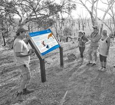 Design of 25 Interpretive Signage panles situated in Winton Wetlands, NE Victoria