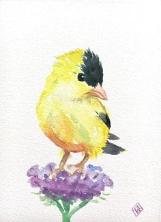 Goldfinch and flowers - 5x7 original watercolor painting - cute, small art, floral, nature artwork, purple, yellow bird, impressionist by FernOriginalArt on Etsy https://www.etsy.com/listing/510295062/goldfinch-and-flowers-5x7-original
