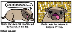 Comic by Natalie Dee: he flips out every single day to maintain his girlish figure