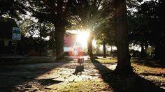 New photo online #sunset in #potsdam - #enjoyweekend #goodevening Hope you like it