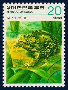 Postage Stamps in the Nature Conservation Series, Narrow-mouthed toad, Animals, Green, Yellow, 1979 11 25, 자연보호 시리즈(제4집), 1979년11월25일, 1153, 맹꽁이, postage 우표