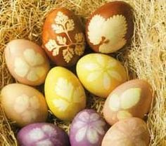 Naturally dyed Easter eggs #natural #plant #dye