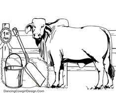 4-H or FFa Show Steer coloring page free printable