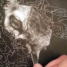 Here's a little sample video of what scratchboard involves for me. Just a bunch of this until it's all done. ;) #shalesesands #wildlifeart #fawn #whitetail #deer #scratchboard #blackandwhite #wip #art #artist #artwork #video #xacto