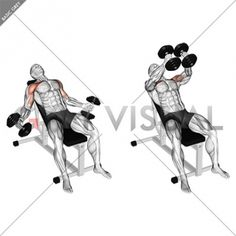 Anatomy of fitness and bodybuilding . Target muscles are marked in red. Initial and final steps. Gym Workout Chart, Gym Workout Videos, Gym Workouts, Dumbbell Fly, Dumbbell Workout, Kettlebell Training, Weight Training Workouts, Boxing Drills, Martial Arts Workout