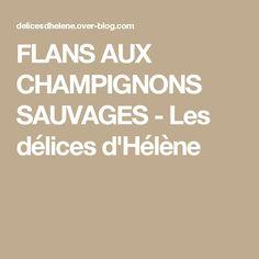FLANS AUX CHAMPIGNONS SAUVAGES - Les délices d'Hélène