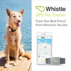 No more lost pets. Track your pets location on-demand from your smartphone.