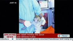 Iran 'successfully sends monkey into space.'