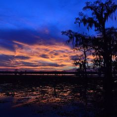 Good Morning East Texas!  Photo taken near Potters Point on Caddo Lake by @cywir.a.
