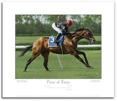 Fine Art Editions   Point of Entry by Robert Clark – Print
