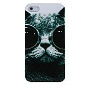 Glasses Cat Plastic Back Case for iPhone 4/4S – USD $ 2.99