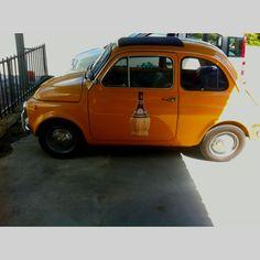 500 want one! Orange Fruit, Orange Color, Fall Season, Activities, Fall, Orange