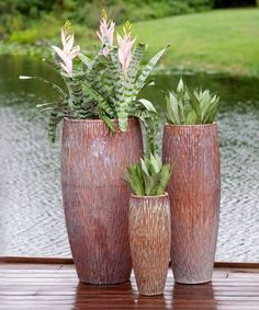 Tall Egg Pot in running cream blend of light pink, salmon and cool blue tones. Beautiful color carves its way down these planters which is why it is part of the Carved Collection of garden containers. Front House Landscaping, Backyard Pool Landscaping, Tropical Landscaping, Vegetable Garden Tips, Container Gardening Vegetables, Container Plants, Diy Planters, Garden Planters, Tall Planters