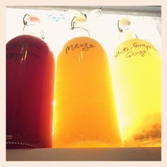 Raspberry, Mango & White Grapefruit Ginger Kombucha Recipes | One tomato, two tomato