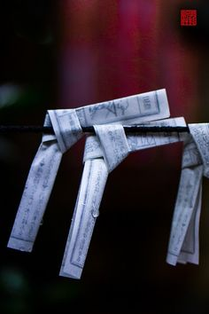 Omikuji - random fortunes written on strips of paper at Shinto shrines and Buddhist temples in Japan.