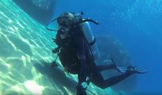 Not on how long does it take to get scuba diving certified, faster or slower depending upon the time you need to become a capable diver. Best Scuba Diving, How To Become, How To Get, Marine Conservation, Take That, Women, Women's, Woman