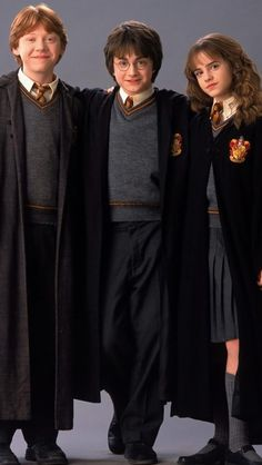 Love this pic Hogwarts Robes, 1 Y 2, Portrait Wall, Love Pictures, Basement, Harry Potter, Aesthetics, Sticker, Gold