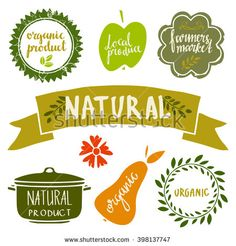 Organic food labels set, bio, eco farm stickers, stamps, icons, logo, frames, card design isolated calligraphic text, handwriting - stock vector