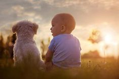 Daily Life of Dogs and Babies Together Photos With Dog, Family Photos, Dogs And Kids, Four Legged, Dog Owners, How To Introduce Yourself, Animals And Pets, Your Dog, New Baby Products