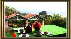 """Restaurante em Quiririm""""CASA DA ELISA"""" Table Decorations, Furniture, Home Decor, Houses, Restaurant, Homemade Home Decor, Home Furnishings, Interior Design, Home Interiors"""