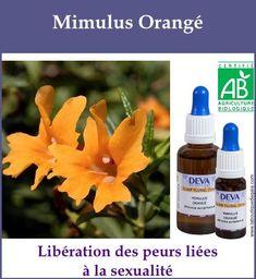 Mimulus orange 2 Gaia, Le Mal A Dit, Elixir Floral, Agriculture Biologique, Boutique, Soap, Orange, Paranormal, Bottle