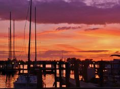 Seafood shack, marina view at sunset.mobi Your Premier Vacation rentals Company on Anna Maria Island Florida Florida Vacation, Vacation Rentals, Bradenton Beach, Indian Shores, Anna Maria Island, Anna Marias, Seattle Skyline, Sunsets, Seafood