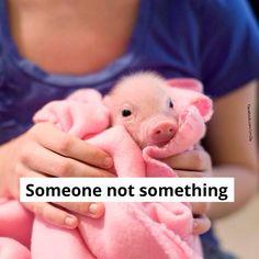 Someone not something