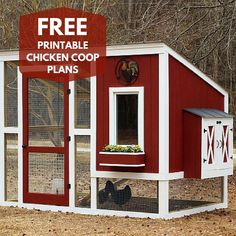 Have you dreamed of raising chickens, but didn't know where to start? Click @HGTV and the link in our bio to get FREE printable step-by-step instructions and plans for building a custom chicken coop like this one! #backyardchickens #chickensofinstagram