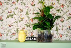nos encanta esta imagen con el papel pintado http://www.pintores-decoradores.com/tienda-online/product_info.php?products_id=535